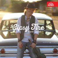GIPSY FIRE (2014)